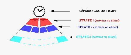 ntp structure entete strate